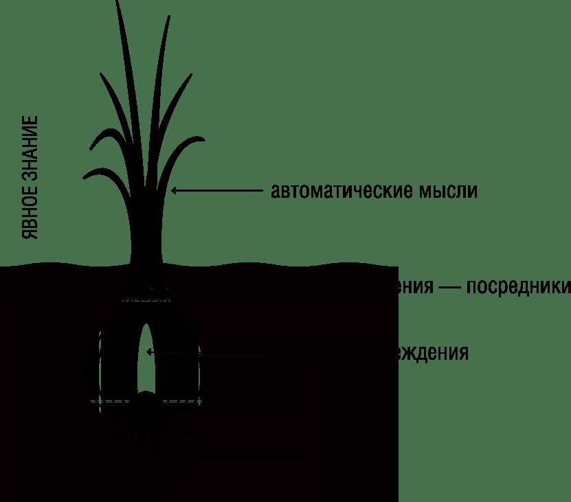 Быстрое семяиспускание: как быстро решить эту проблему?
