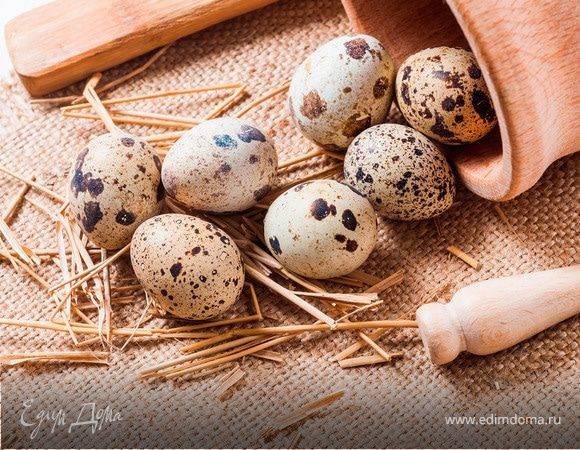 Перепелиные яйца: польза и вред, как принимать?