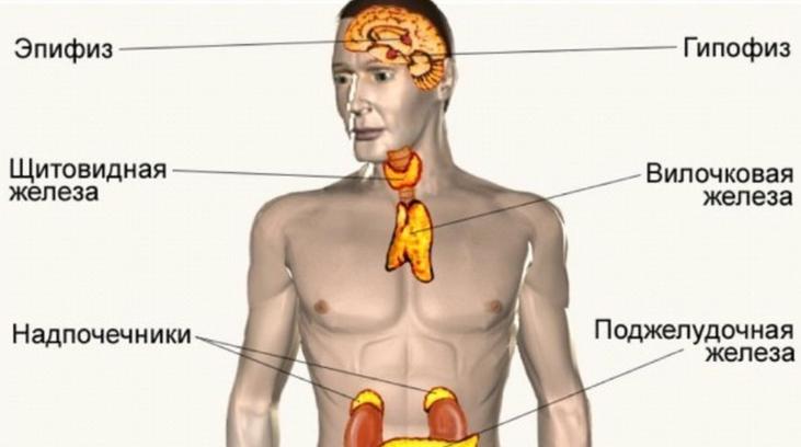 Гормон гспг у мужчин: нормальные значения, причины отклонений и их лечение