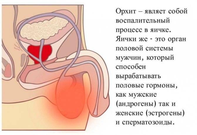 Уретрит у мужчин, что это? симптомы и лечение