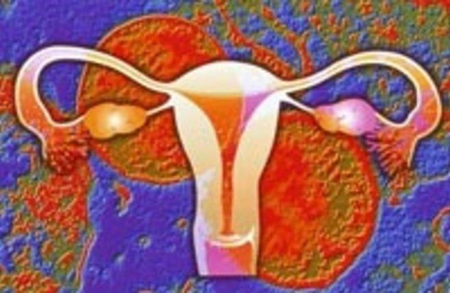 Как передается хламидиоз, пути заражения и профилактика болезни
