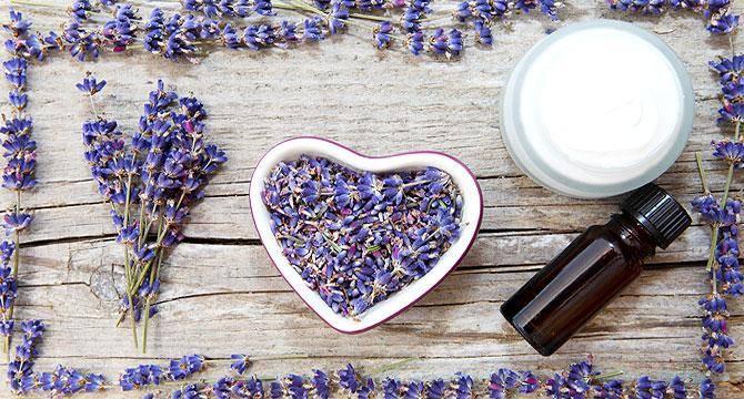 Значение масла лаванды в косметологии
